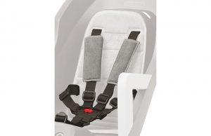 seatbelt_01